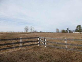 Photo 23: 26101 Twp 490: Rural Leduc County House for sale : MLS®# E4261133