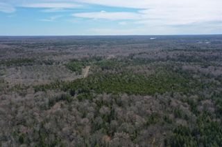 Photo 8: Lots Hectanooga Road in Mayflower: 401-Digby County Vacant Land for sale (Annapolis Valley)  : MLS®# 202110451