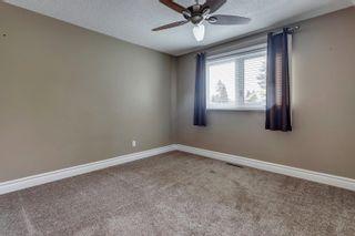 Photo 22: 82 FAIRWAY Drive in Edmonton: Zone 16 House for sale : MLS®# E4266254