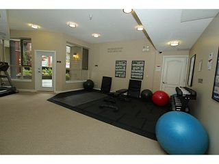 "Photo 19: 409 2628 MAPLE Street in Port Coquitlam: Central Pt Coquitlam Condo for sale in ""VILLAGIO"" : MLS®# V1142798"