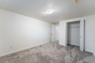 Photo 23: 99 Flavelle Road SE in Calgary: Fairview Detached for sale : MLS®# A1151118