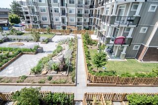 """Photo 25: 512 20696 EASTLEIGH Crescent in Langley: Langley City Condo for sale in """"Georgia"""" : MLS®# R2617433"""