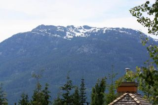 Photo 8: 6 4894 PAINTED CLIFF Road in Whistler: Benchlands Condo for sale : MLS®# R2076957