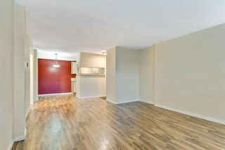 Photo 6: 131 1421 7 Avenue NW in Calgary: Hillhurst Apartment for sale : MLS®# A1074873