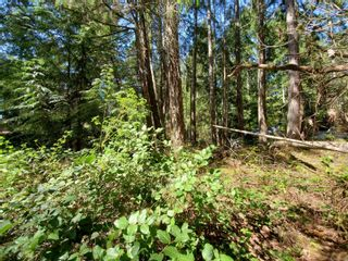 Photo 5: LT 26 Berg Rd in : Isl Gabriola Island Land for sale (Islands)  : MLS®# 873535