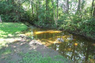 Photo 8: B33370 Thorah Side Road in Brock: Rural Brock House (Bungalow-Raised) for sale : MLS®# N5326776