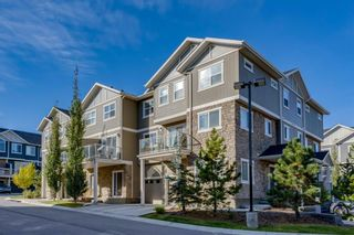 Photo 21: 203 Evanston Manor NW in Calgary: Evanston Row/Townhouse for sale : MLS®# A1149522