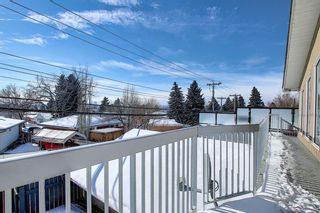 Photo 39: 63 Cromwell Avenue NW in Calgary: Collingwood Detached for sale : MLS®# A1060725