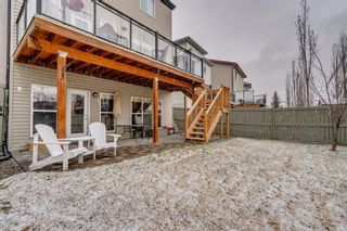 Photo 34: 9 Copperfield Point SE in Calgary: Copperfield Detached for sale : MLS®# A1100718