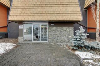 Photo 2: 301 315 50 Avenue SW in Calgary: Windsor Park Apartment for sale : MLS®# A1046281