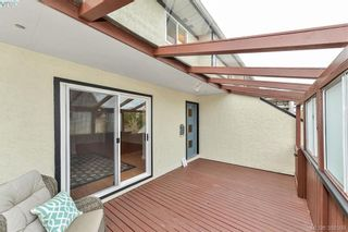 Photo 14: 8 954 Queens Ave in VICTORIA: Vi Central Park Row/Townhouse for sale (Victoria)  : MLS®# 780769