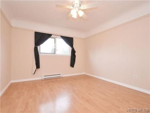 Photo 10: Photos: 4091 Borden St in VICTORIA: SE Lake Hill House for sale (Saanich East)  : MLS®# 720229