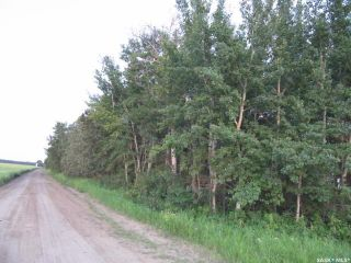 Photo 5: Tobin Lake Acreage Plot ( 5 Acres) in Moose Range: Lot/Land for sale (Moose Range Rm No. 486)  : MLS®# SK839734