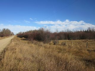 Photo 20: NW 24-54 RR 131: Niton Junction Rural Land for sale (Edson)  : MLS®# 32590