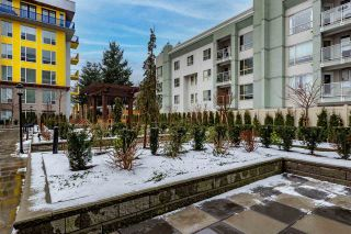 """Photo 29: 102 2565 WARE Street in Abbotsford: Central Abbotsford Condo for sale in """"Mill District"""" : MLS®# R2538607"""