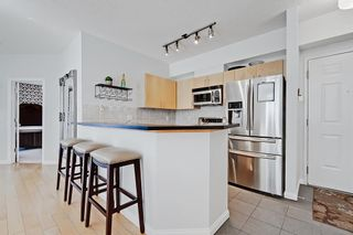 Photo 4: 208 527 15 Avenue SW in Calgary: Beltline Apartment for sale : MLS®# A1140763