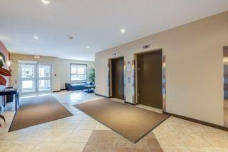 Photo 31:  in Edmonton: Zone 56 Condo for sale : MLS®# E4255682