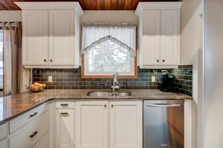 Photo 16: 2108 51 Avenue SW in Calgary: North Glenmore Park Detached for sale : MLS®# A1058307