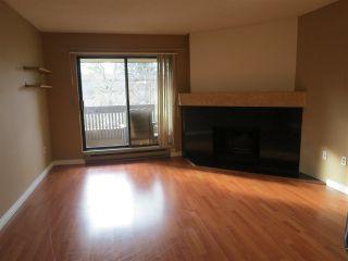 Photo 3: 206 7411 MINORU BOULEVARD in Richmond: Brighouse South Condo for sale : MLS®# R2039283