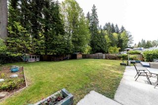 Photo 17: 1478 ARBORLYNN Drive in North Vancouver: Westlynn House for sale : MLS®# R2378911