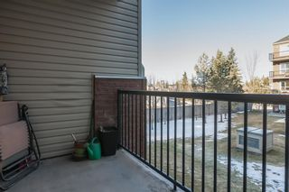 Photo 9: 2308 73 Erin Woods Court SE in Calgary: Erin Woods Apartment for sale : MLS®# A1061883