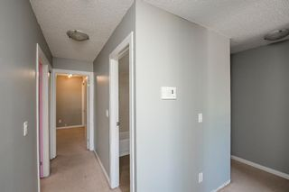 Photo 11: 201 611 67 Avenue SW in Calgary: Kingsland Apartment for sale : MLS®# A1124707
