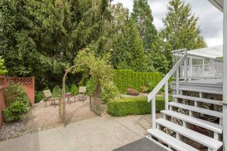 Photo 19: 20955 47 Avenue in Langley: Langley City House for sale : MLS®# R2099176