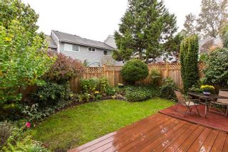 Photo 20: 8227 STRAUSS DRIVE in Vancouver East: Champlain Heights Condo for sale ()  : MLS®# R2009671