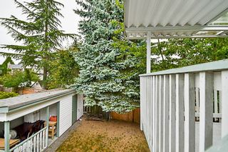 """Photo 19: 15069 98 Avenue in Surrey: Guildford House for sale in """"GUILDFORD / BONNACCORD"""" (North Surrey)  : MLS®# R2190173"""