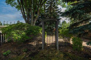 Photo 5: 11524 43 Avenue in Edmonton: Zone 16 House for sale : MLS®# E4257388