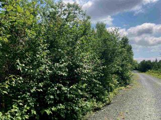 Photo 7: Lot 6 Anderson Drive in Goldenville: 303-Guysborough County Vacant Land for sale (Highland Region)  : MLS®# 202016652