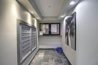 Photo 31: 3201 310 Mckenzie Towne Gate SE in Calgary: McKenzie Towne Apartment for sale : MLS®# A1117889