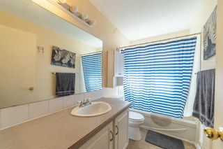 Photo 13: 4333 58 Street NE in Calgary: Temple Detached for sale : MLS®# A1092710