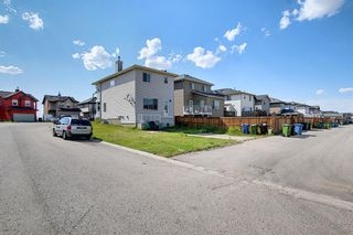 Photo 50: 311 TARALAKE Terrace NE in Calgary: Taradale Detached for sale : MLS®# A1128054