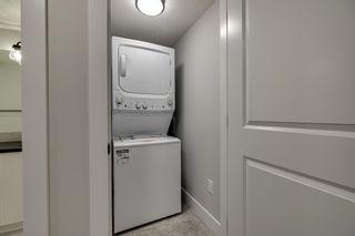 Photo 39: 10207 79 Street in Edmonton: Zone 19 House for sale : MLS®# E4249395