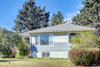Photo 50: 1223 Richland Road NE in Calgary: Renfrew Detached for sale : MLS®# A1153557