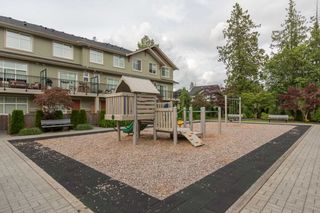 """Photo 15: 25 20967 76 Street in Langley: Willoughby Heights Townhouse for sale in """"Nature's Walk"""" : MLS®# R2074394"""