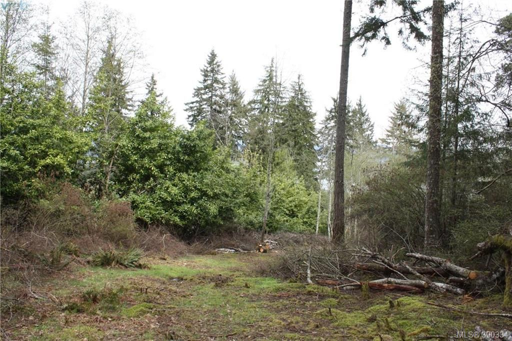 Photo 12: Photos: 414 Stewart Rd in SALT SPRING ISLAND: GI Salt Spring Land for sale (Gulf Islands)  : MLS®# 784416