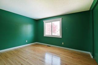 Photo 22: 8 Falk Avenue in Ottawa: Barrhaven House for sale