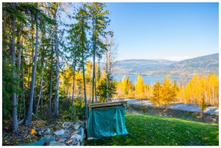 Photo 9: 5046 Sunset Drive: Eagle Bay House for sale (Shuswap Lake)  : MLS®# 10107837