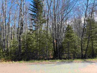 Photo 3: Lot Hall Road in South Greenwood: 404-Kings County Vacant Land for sale (Annapolis Valley)  : MLS®# 202110363