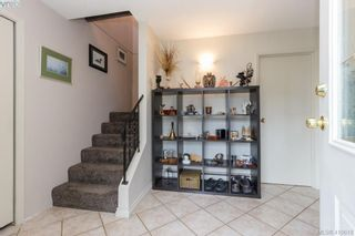 Photo 4: 4389 Columbia Dr in VICTORIA: SE Gordon Head House for sale (Saanich East)  : MLS®# 813897