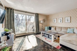 Photo 4: 404 120 24 Avenue SW in Calgary: Mission Apartment for sale : MLS®# A1079776