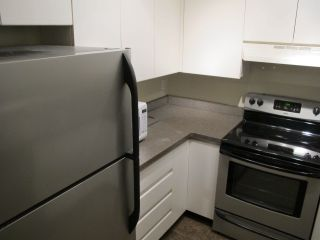 Photo 4: 306 525 AGNES Street in New Westminster: Downtown NW Condo for sale : MLS®# R2015495