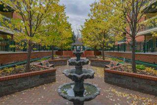 Photo 6: 103 37 SIR WINSTON CHURCHILL Avenue: St. Albert Condo for sale : MLS®# E4224552