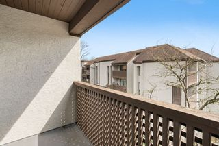 """Photo 11: 404 385 GINGER Drive in New Westminster: Fraserview NW Condo for sale in """"Fraser Mews"""" : MLS®# R2556053"""