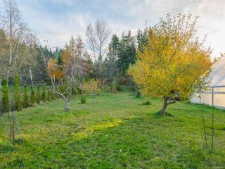 Photo 28: 1135 Corcan Rd in : PQ Qualicum North House for sale (Parksville/Qualicum)  : MLS®# 859985
