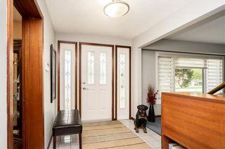 Photo 8: 317 Leila Avenue in Winnipeg: Margaret Park Residential for sale (4D)  : MLS®# 202112459