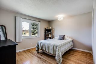 Photo 13: 24 Sackville Drive SW in Calgary: Southwood Detached for sale : MLS®# A1149679