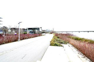 "Photo 33: 708 6622 PEARSON Way in Richmond: Brighouse Condo for sale in ""2 River Green"" : MLS®# R2543979"